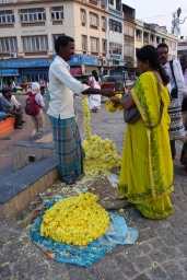 Mysore silk and matching flowers