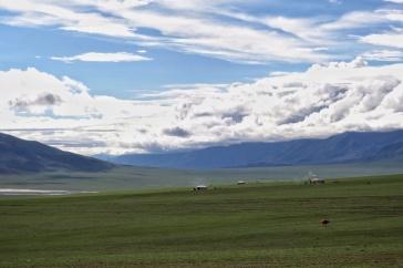 Picture postcard mongolia