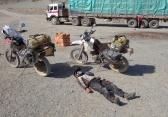 Dead Lottie after a week in Mongolia
