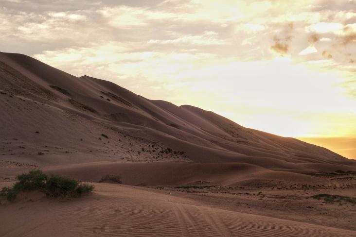 The massive Khongoryn Els sand dunes lie at the heart of the Gobi desert